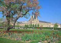 Франция. Париж. Сад Тюильери